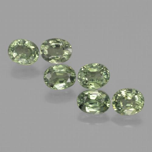 Green Sapphire Gem - 0.8ct Oval Facet (ID: 462664)