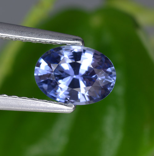 Blue Sapphire Gem - 0.8ct Oval Facet (ID: 464061)