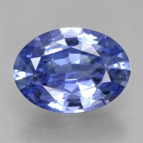 Blue Sapphire Gem - 0.9ct Oval Facet (ID: 464118)