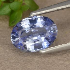 Blue Sapphire Gem - 1.1ct Oval Facet (ID: 475611)