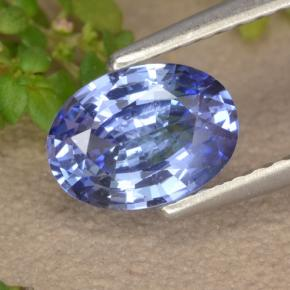 Blue Sapphire Gem - 1ct Oval Facet (ID: 475614)