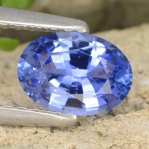 Blue Sapphire Gem - 0.8ct Oval Facet (ID: 475704)