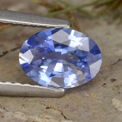 Blue Sapphire Gem - 0.8ct Oval Facet (ID: 475812)