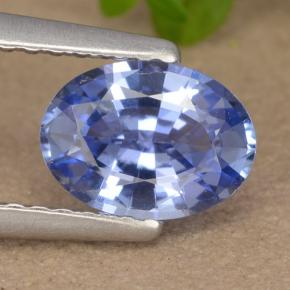 Blue Sapphire Gem - 1ct Oval Facet (ID: 475911)