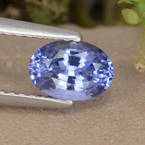 Blue Sapphire Gem - 0.9ct Oval Facet (ID: 476086)