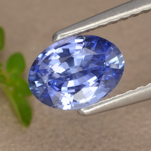 Blue Sapphire Gem - 0.9ct Oval Facet (ID: 476216)