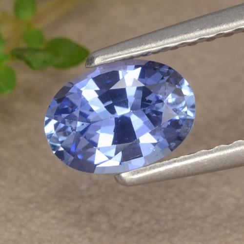 Blue Sapphire Gem - 0.9ct Oval Facet (ID: 476220)