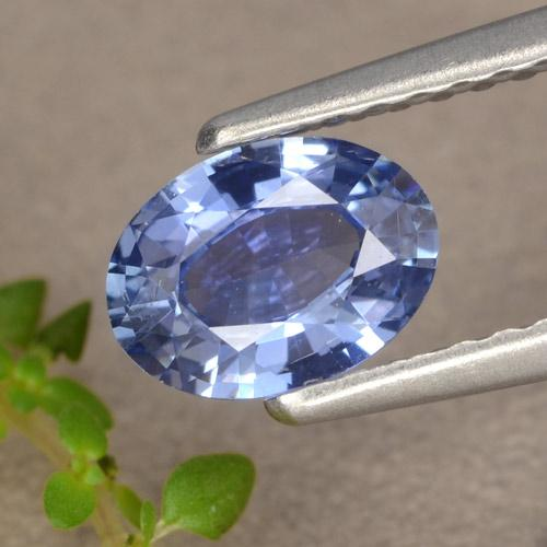 Blue Sapphire Gem - 0.7ct Oval Facet (ID: 476224)
