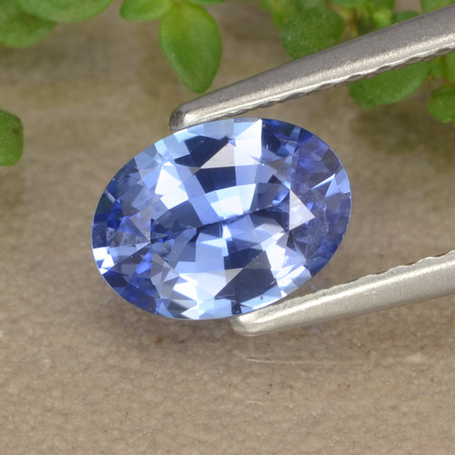 Blue Sapphire Gem - 0.9ct Oval Facet (ID: 476379)