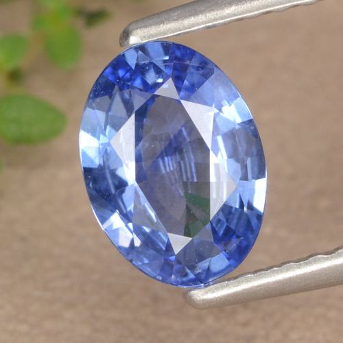 Blue Sapphire Gem - 0.9ct Oval Facet (ID: 476434)