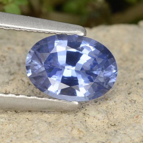 Blue Sapphire Gem - 0.9ct Oval Facet (ID: 476486)