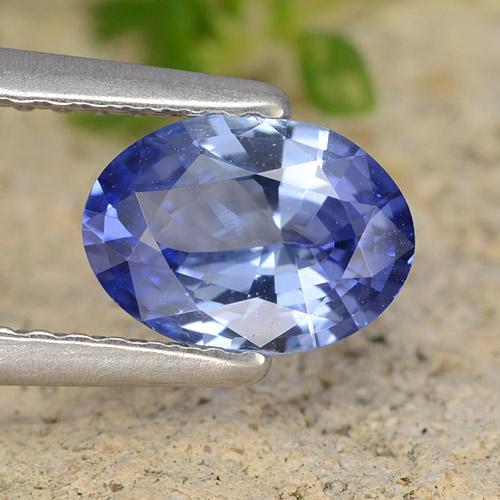 Blue Sapphire Gem - 0.9ct Oval Facet (ID: 490150)