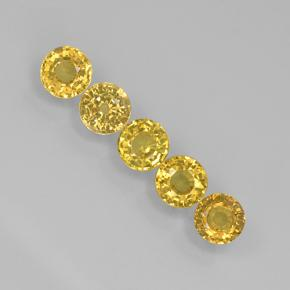 Yellow Sapphire Gem - 0.3ct Round Facet (ID: 503974)