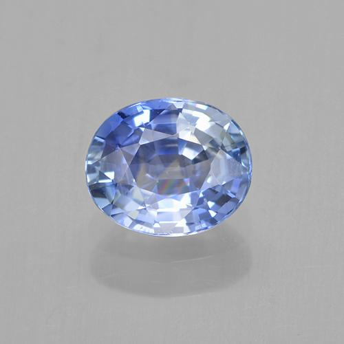Blue Sapphire Gem - 0.8ct Oval Facet (ID: 505777)