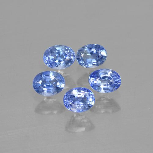 Blue Sapphire Gem - 0.2ct Oval Facet (ID: 506111)