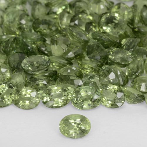 Yellowish Green Sapphire Gem - 0.2ct Oval Facet (ID: 509601)