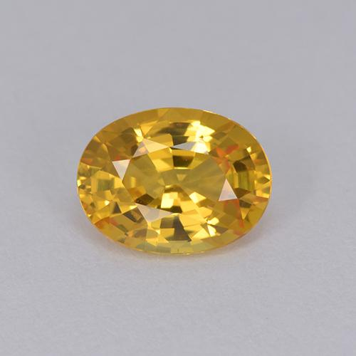 Yellow Golden Sapphire Gem - 1.4ct Oval Facet (ID: 511927)