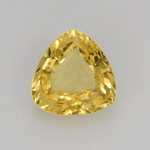 Yellow Sapphire Gem - 0.5ct Trillion Facet (ID: 515782)