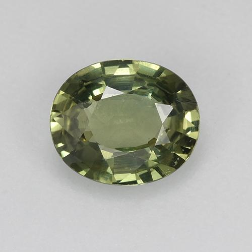 Warm Forest Green Sapphire Gem - 0.8ct Oval Facet (ID: 517962)