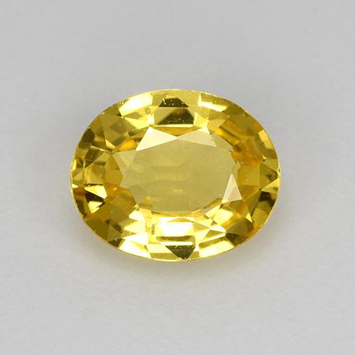Yellow Sapphire Gem - 0.7ct Oval Facet (ID: 517964)
