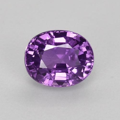 Medium-Dark Purplish Violet Sapphire Gem - 0.8ct Oval Facet (ID: 523038)