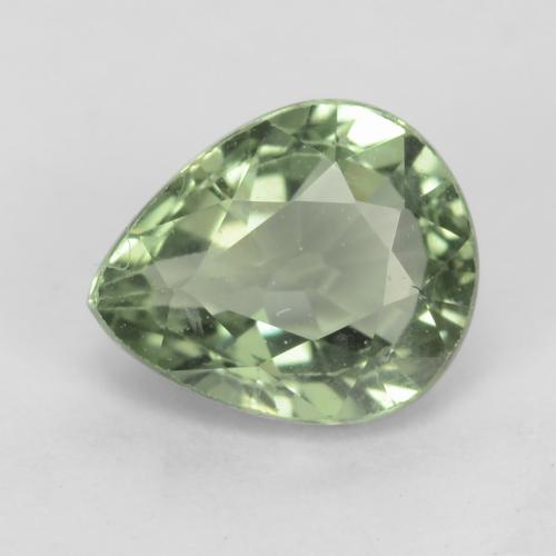 Light Forest Green Sapphire Gem - 1ct Pear Facet (ID: 538946)