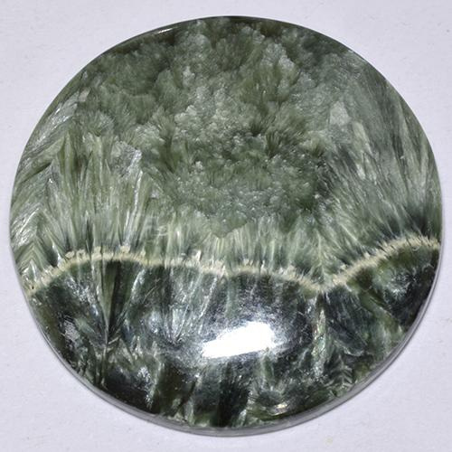 Green Seraphinite Gem - 32.4ct Round Cabochon (ID: 514356)