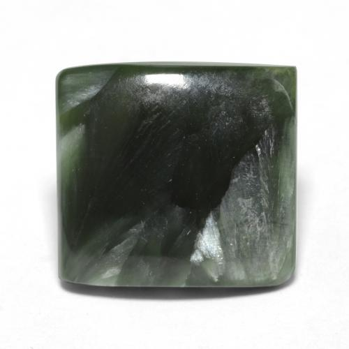 Forest Green Seraphinite Gem - 4ct Square Cabochon (ID: 548590)