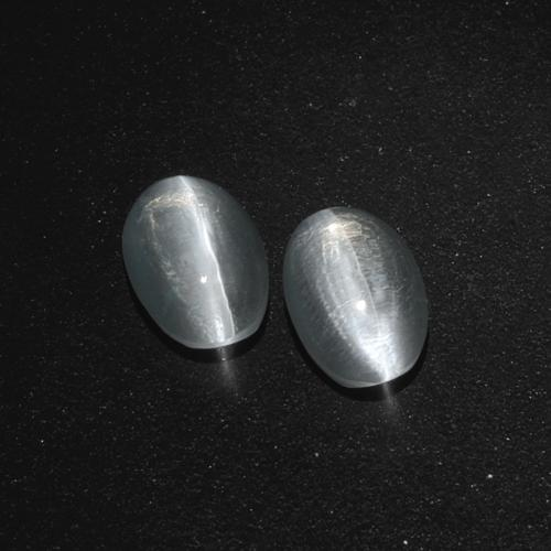 Clear White Sillimanite Cat's Eye Gem - 1.3ct Oval Cabochon (ID: 410404)