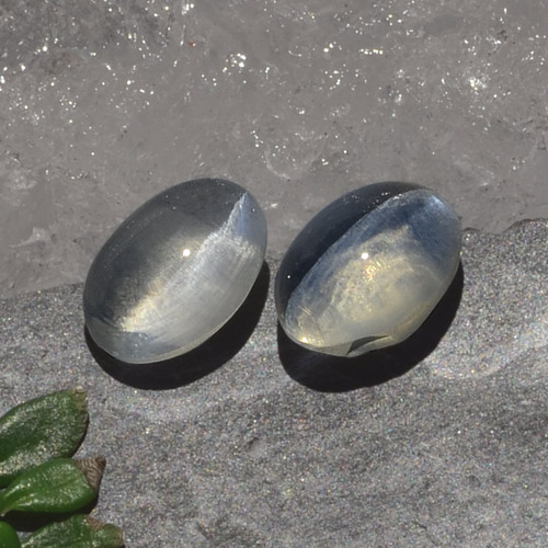 Smoke Sillimanite Cat's Eye Gem - 1.3ct Oval Cabochon (ID: 474174)