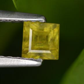 Buy 0.43 ct Greenish Golden Sphene 3.84 mm x 3.7 mm from GemSelect (Product ID: 261639)