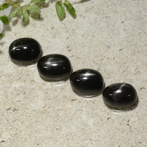 Black Star Diopside Gem - 1.8ct Oval Cabochon (ID: 499274)