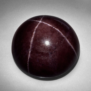 66ct Black Red Star Garnet Gem From India Natural And
