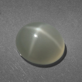 Cream Star Moonstone Gem - 5.9ct Oval Cabochon (ID: 418684)