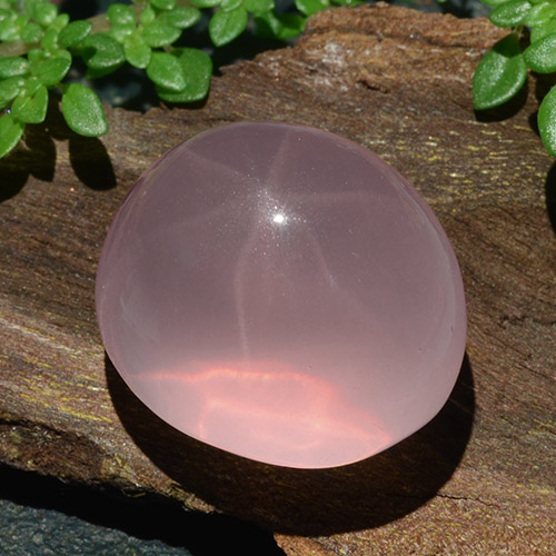Pink Star Rose Quartz Gem - 31.1ct Oval Cabochon (ID: 483513)