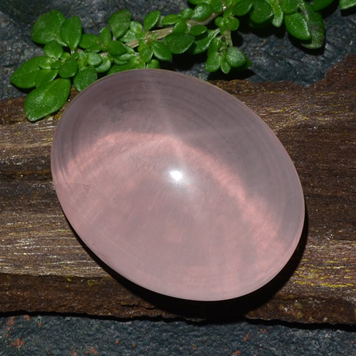 Pink Star Rose Quartz Gem - 41.4ct Oval Cabochon (ID: 483737)