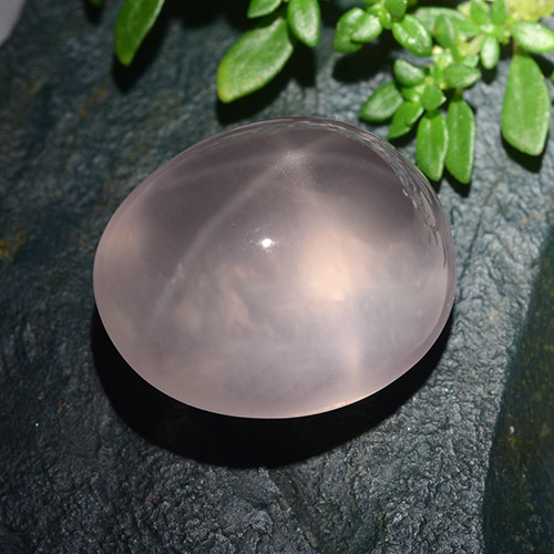 Pink Star Rose Quartz Gem - 30.2ct Oval Cabochon (ID: 491566)