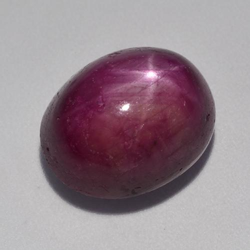 Medium-Dark Purple Star Ruby Gem - 12.5ct Oval Cabochon (ID: 521342)
