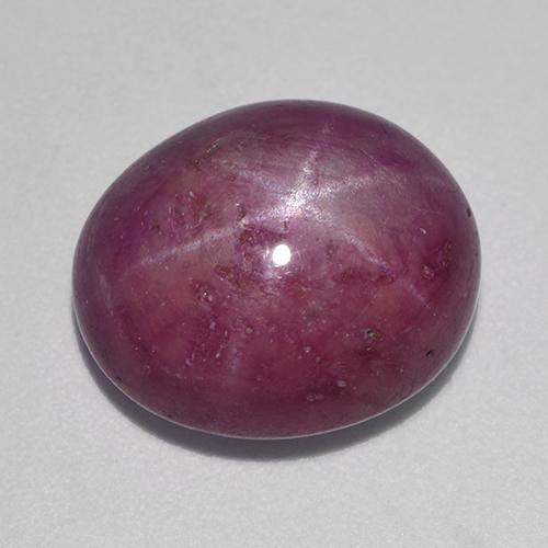 Plum Purple Star Ruby Gem - 12.5ct Oval Cabochon (ID: 523433)