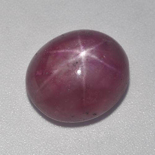 Plum Purple Star Ruby Gem - 11.2ct Oval Cabochon (ID: 524854)