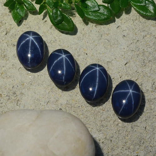 Deep Navy Blue Star Sapphire Gem - 1.3ct Oval Cabochon (ID: 490191)