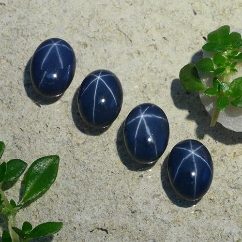 1.4ct Oval Cabochon Deep Navy Blue Star Sapphire Gem (ID: 490211)