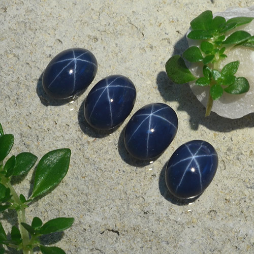 1.3ct Oval Cabochon Deep Navy Blue Star Sapphire Gem (ID: 490212)