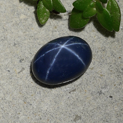 1.3ct Oval Cabochon Deep Navy Blue Star Sapphire Gem (ID: 490359)
