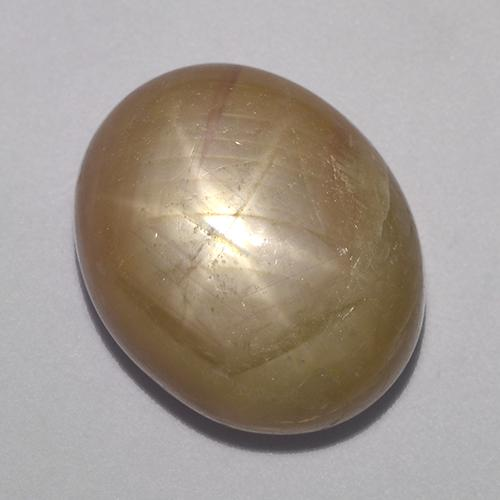 Greenish Yellow Star Sapphire Gem - 19.6ct Oval Cabochon (ID: 523605)