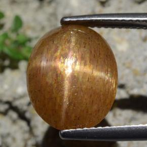 Medium Brown Star Sunstone Gem - 5.7ct Oval Cabochon (ID: 471222)