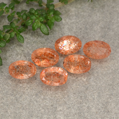 Grapefruit Orange Sunstone Gem - 0.5ct Oval Facet (ID: 480129)