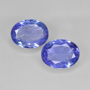 Electric Blue Tanzanite Gem - 1.6ct Ovale sfaccettato (ID: 345681)