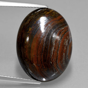 thumb image of 15ct Oval Cabochon Multicolor Tiger's Eye Matrix (ID: 406028)