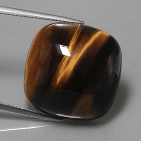 Buy 28.03 ct Gold Brown Tiger's Eye 19.91 mm x 19.9 mm from GemSelect (Product ID: 323358)